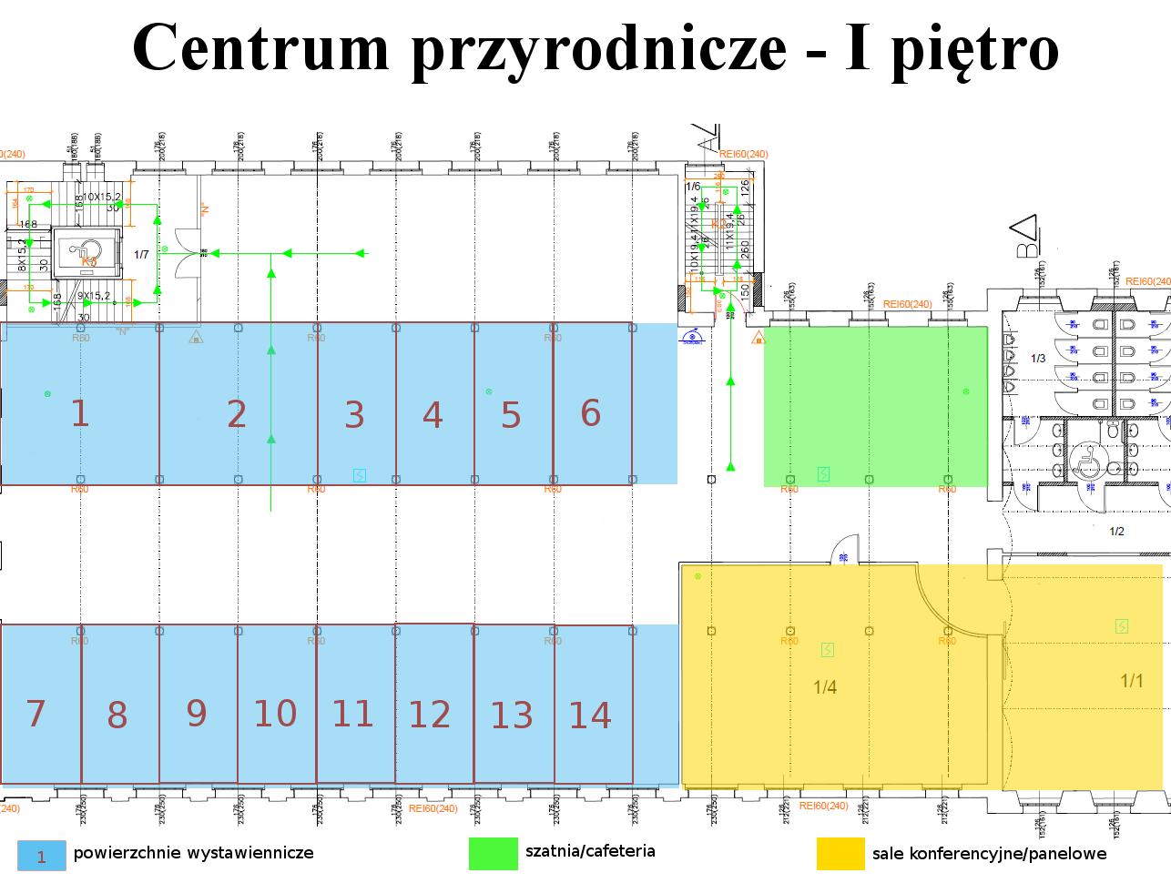 Schemat: Centrum przyrodnicze - I piętro